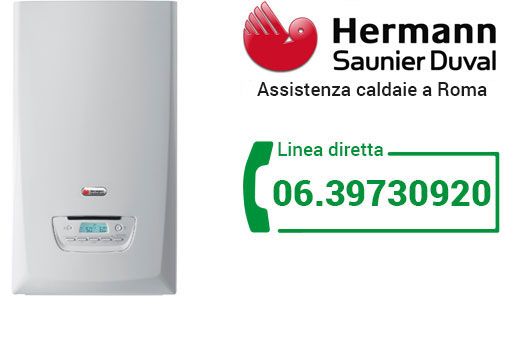 assistenza HERMANN-SAUNIER DUVAL Roma